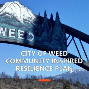 Resilience-Weed Final Plan